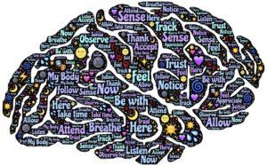 het ademcentrum in de hersenen