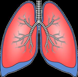 De longen worden bij acute hyperventilatie verzadigd met zuurstof